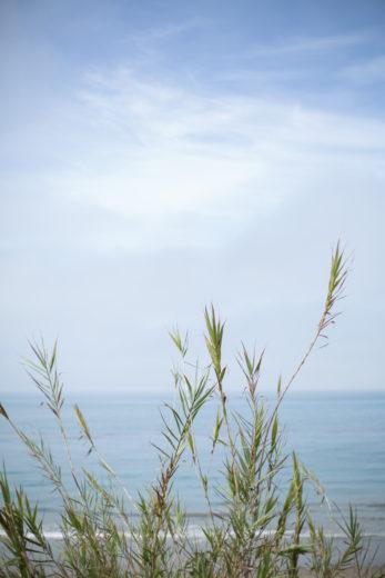 Summerland Beach Elopment