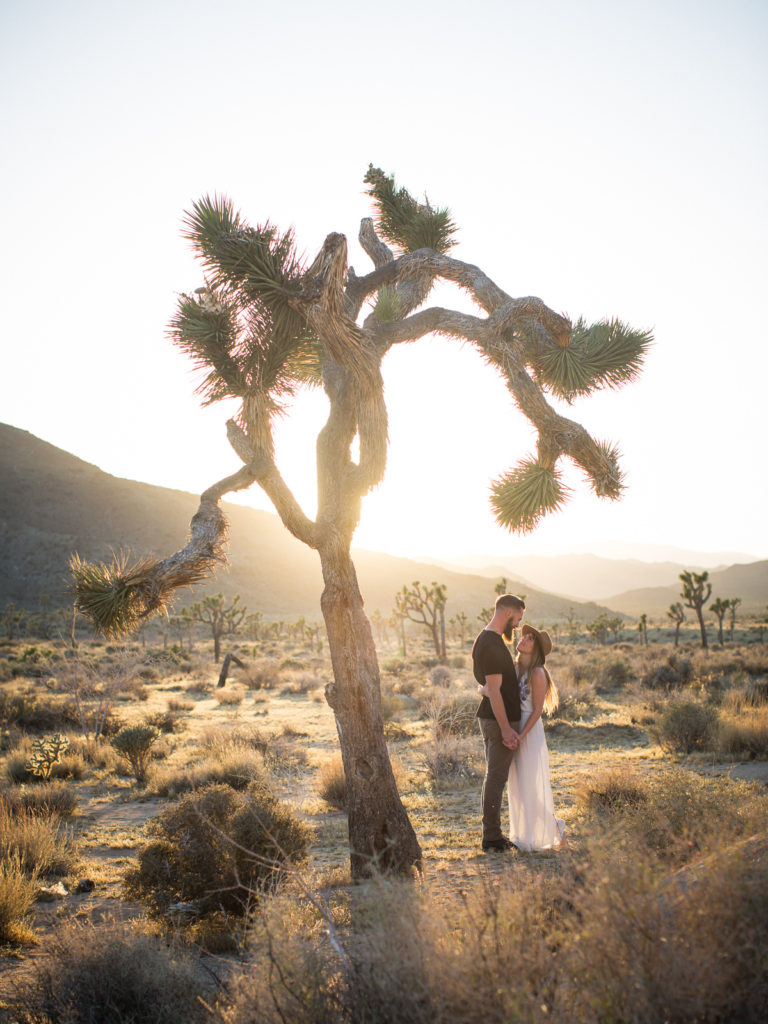 Joshua Tree engagement sessions