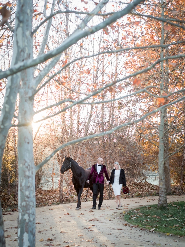 Elegant Destination Elopement at Kestrel Park -santa ynez equestrian