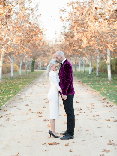 A Winter Kestrel Park Elopement